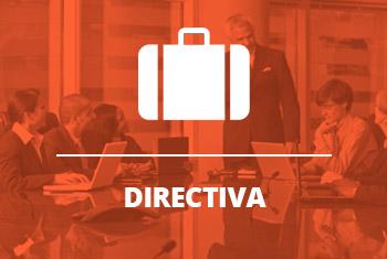 votacion por internet para eleccion de directiva de tu organizacion. actualmente muchos ya lo han usado: sindicatos, asociaciones, colegios profesionales